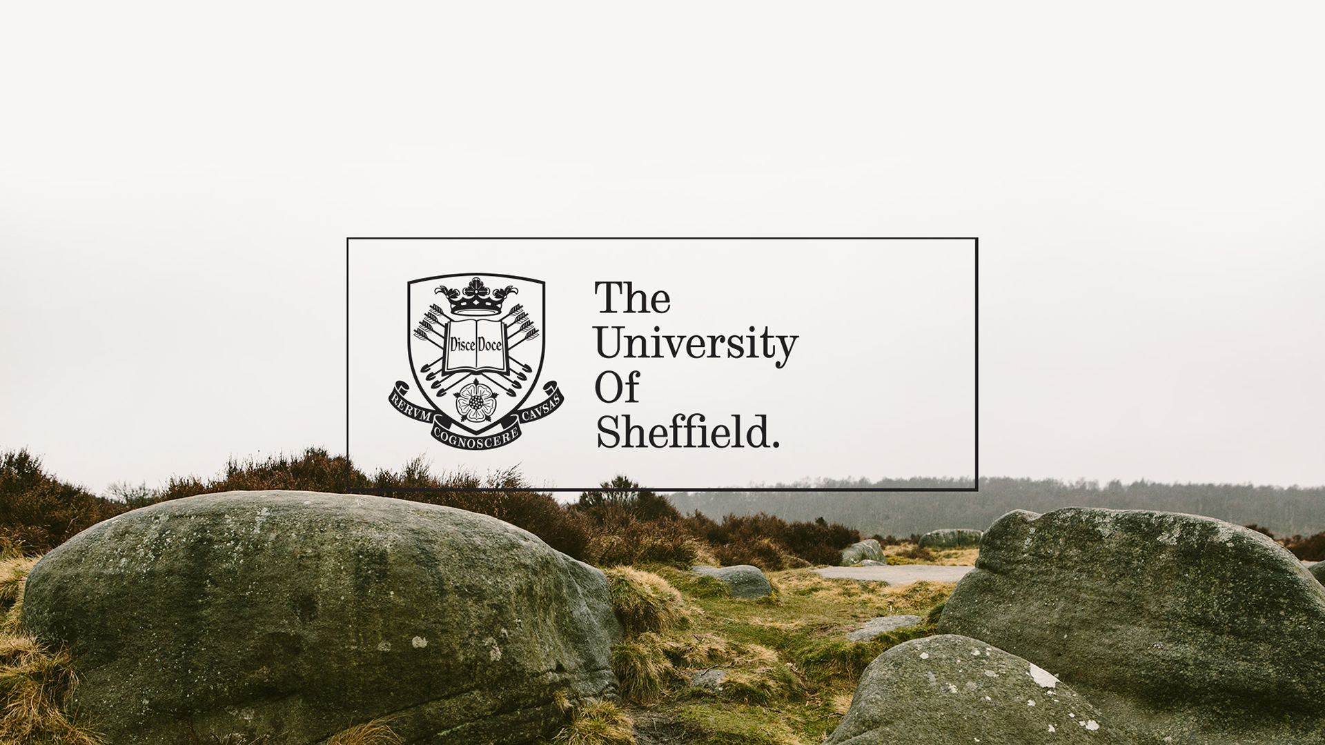 The University of Sheffield cover image
